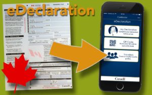 eDeclaration statt Declaration Card